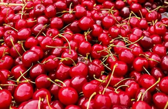 Cseresznye fagyasztása